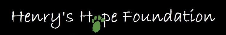 Henry's Hope Foundation